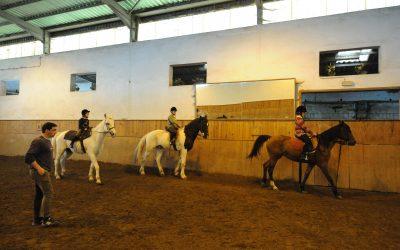 Centro Equestre O Ilhéu, Lda